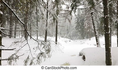 Panoramic view of winter forest - Panoramic view of wild...