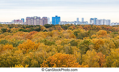 panoramic view of yellow park and city in autumn