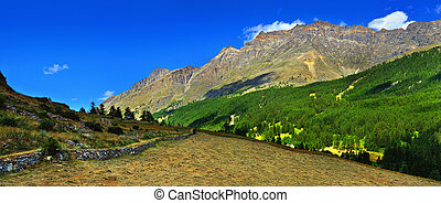 panoramic view on alpien mountains with hayfield - panoramic...