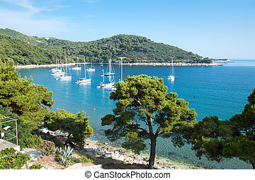 Panoramic view on Saplunara harbor. Mljet, Croatia