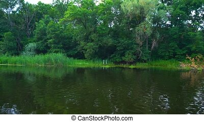 Panoramic view or river and forest behind in tranquil summer...
