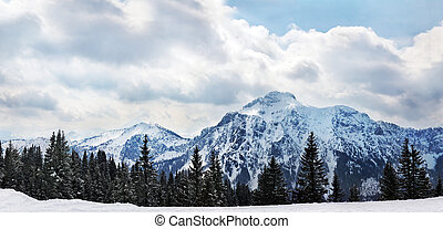 Panoramic view to The Alps at Schwangau, Germany?