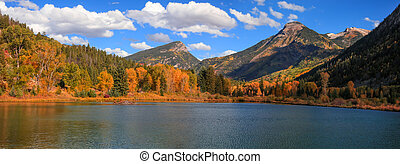 Aspen trees at foot hill by the lake in autumn time