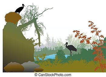 Panoramic wild landscape with a pond, broken tree, plants and storks