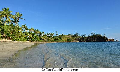 panoramico, paesaggio, di, uno, remoto, spiaggia tropicale, in, il, yasawa, isole, figi