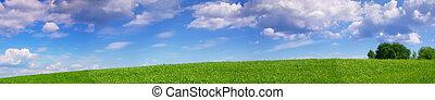 panoramiczny, łąka, krajobraz, lato