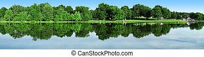 panoramiczny, park, staw