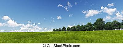 panoramisch, grünes gras