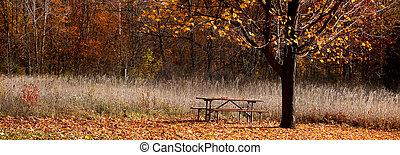 panoramisch, park, aanzicht