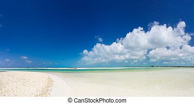 panoramische ansicht, von, am besten, tropischer strand, in, welt
