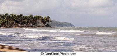 panoramische ansicht, von, der, sandstrand