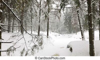 panoramische ansicht, von, winter, wald