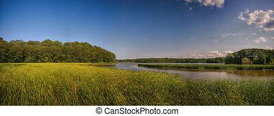 panoramisk udsigter, i, marshland, landskab