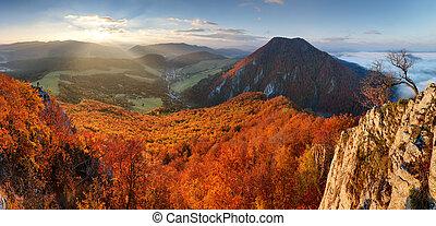 panorana, berg, herbstlandschaft, slowakei, wald, sonnenaufgang