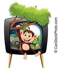 pantalla de tv, mono, rama, ahorcadura