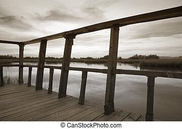 pantano, de madera, punto de vista, en, sepia, tone.