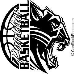 panther basketball