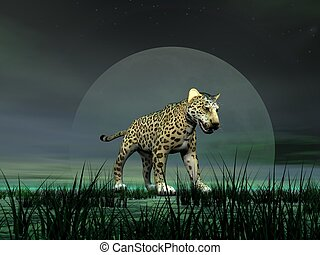 Panther by moonlight
