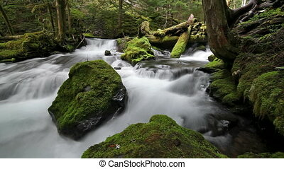 High Definition Movie of Long Exposure Water Flowing at Panther Creek Falls in Skamania County Washington 1920x1080