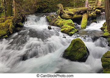 Panther Creek in Washington State