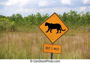 Panther Crossing Sign, Everglades National Park, Florida