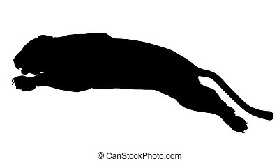 Panther Illustration Silhouette