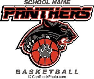 panthers basketball