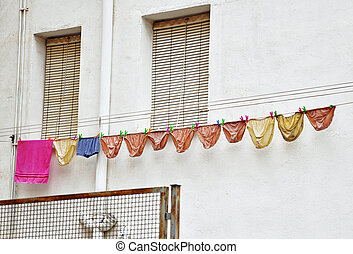 panties drying on the clothesline
