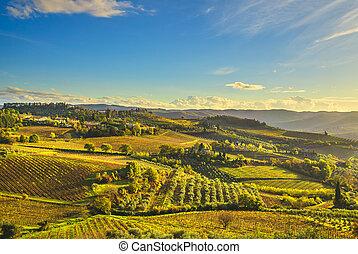 panzano, in, chianti, weinberg, und, panorama, an, sunset., toscana, italien