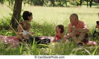 papa, fille, fils, rire, maman, pendant, pique-nique, vacances