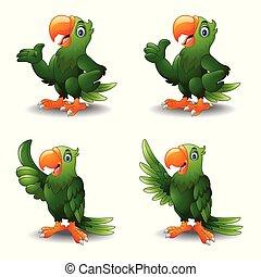 papagai, sammlungen, karikatur, satz, grün
