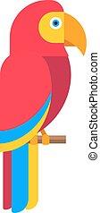 papagaio, jardim zoológico, pássaro tropical, vetorial, animal, selvagem, pena, caricatura