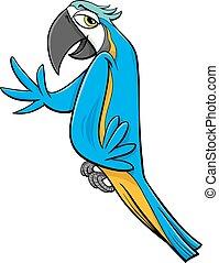 papagaio, macaw, caricatura, ilustração