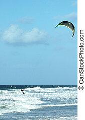 papagaio, surfer1