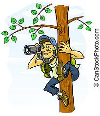 paparazzi, fénykép, alapján, egy, fa