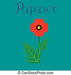 papaver, 平ら, 花, 背景, イラスト