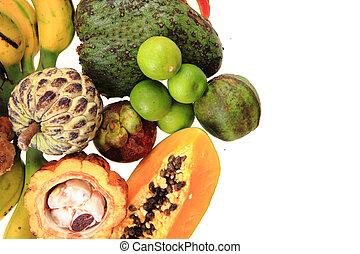 papaya annona passionfruit avocado and other exotic fruits