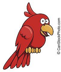 papegoja, tecknad film, illustration