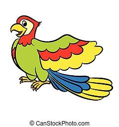 papegoja, tecknad film, illustration, söt