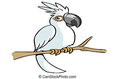papegoja, tecknad film, vit