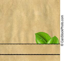 papelão, papel, fundo, com, folhas