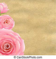 papel, antigas, cor-de-rosa levantou-se