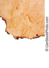 papel, queimado, bordas, antigas
