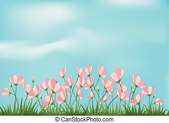 Paper art illustration of cosmos flowers and grass with blue sky paper cut style background
