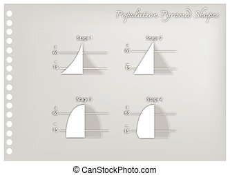 Paper Art of Four Stages of Population Pyramids - Population...