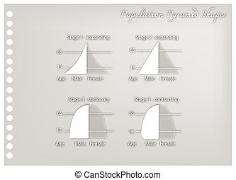 Paper Art of Four Types of Population Pyramids - Population...