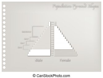Paper Art of Population Pyramids Graph with 4 Generation -...