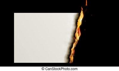 Paper burn. HD. Alpha.