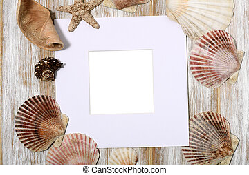 Paper frame with seashells