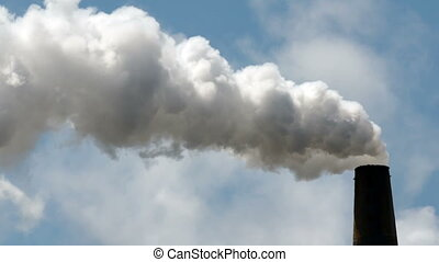 Paper Mill Smokestack Billowing - Material billows from an...